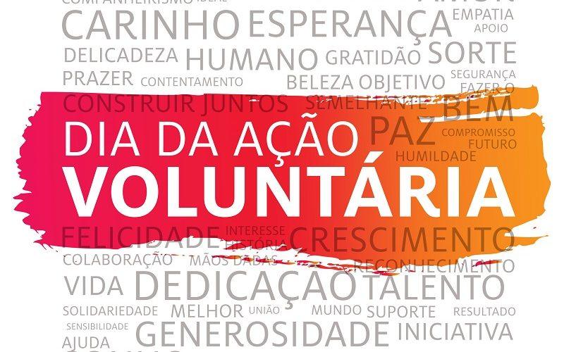 Recorde de voluntários no Dia da Ação Voluntária 2019